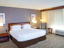 DoubleTree 1 King Bed Non-Smoking
