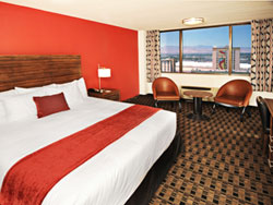 The D Las Vegas Standard Room